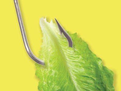 خوراک-گیاهی-در-آبزی-پروری