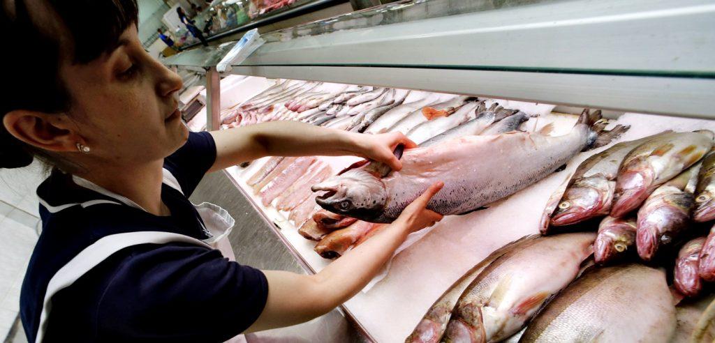 فروش ماهی پرورشی روسیه